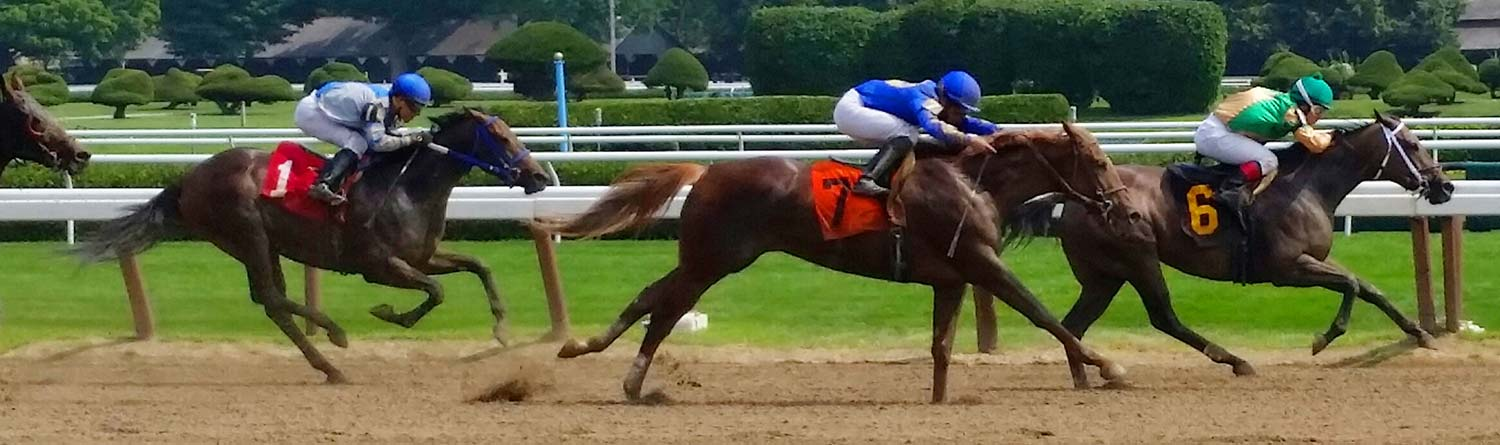 a horse race at Saratoga Race Track