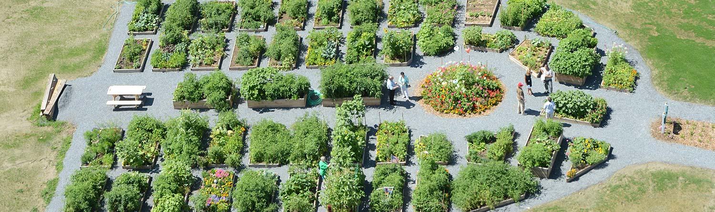 community garden aerial photo