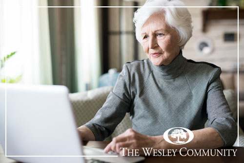 senior woman with white hair sitting at the table and looking at computer