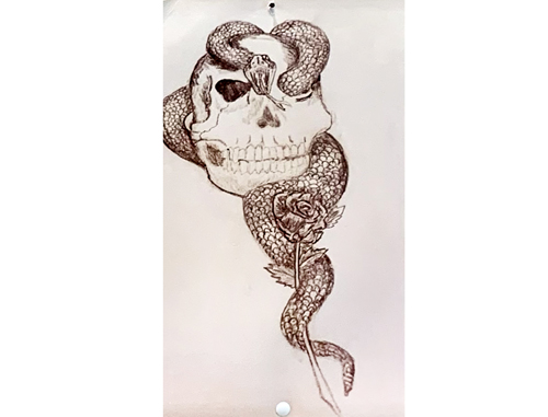 skullsnake drawing