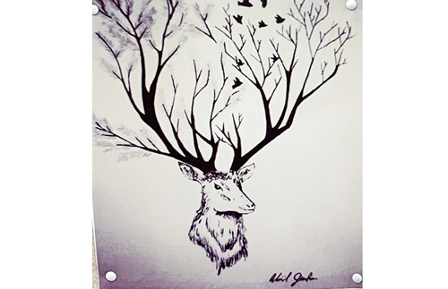 stagtree drawing