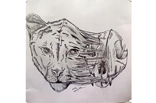 catskull drawing