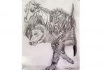 wolf skeleton drawing