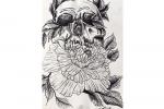 skullflower drawing