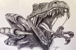 T rex Drawing